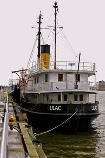 Lightship Tender Lilac, 2013